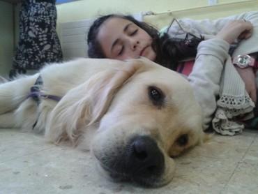 Actividad Asistida con Perros